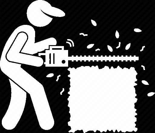Taille de haie de cèdre